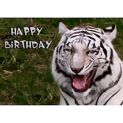 *BTCT~ danas slavi  četvrti  rođendan! Happy_birthday_tiger_greeting_card