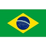 Brazil flag Wall Decals