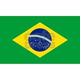 Brazil flag Wall Decals