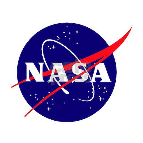 NASA Meatball Logo Aluminum License Plate by quatrosales