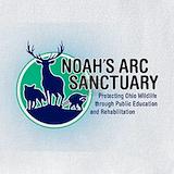 Noah's arc Bib