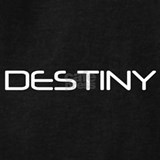 Destiny Sweatshirts & Hoodies