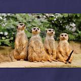 Meerkat Aprons