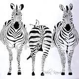 Animal Polos