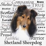 Sheltie Sweatshirts & Hoodies