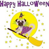 Halloween pet Pajamas & Loungewear
