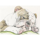 English bulldog Pajamas & Loungewear