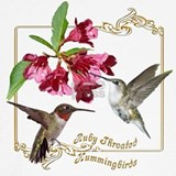 Hummingbird Sweatshirts & Hoodies