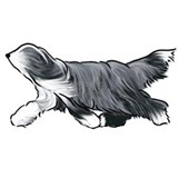Bearded collie Pajamas & Loungewear