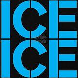 Ice ice Maternity