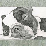Boston terrier Pajamas & Loungewear