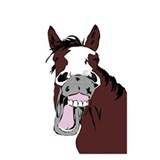 Equestrian Wall Decals