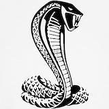Cobra Underwear