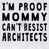 Architect proof mommy Bib