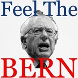Feel the bern Underwear & Panties
