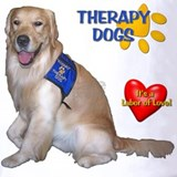 Animal assisted therapy Polos