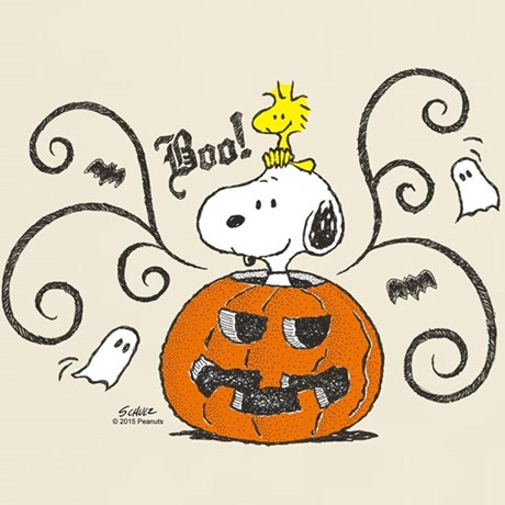 Peanuts Halloween Products