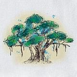 Bodhi tree Bib