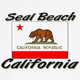 California state flag Underwear & Panties
