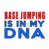 Base jumping Wall Decals