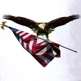 American eagle and flag Polos