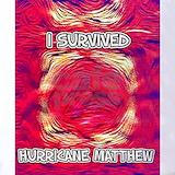 Hurricane matthew survivor men 27s Polos