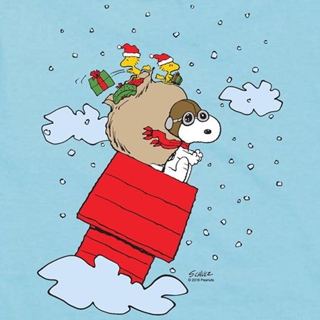 Snoopy Flying Ace Products