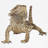 Bearded dragon Underwear