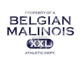 Belgian malinois T-shirts