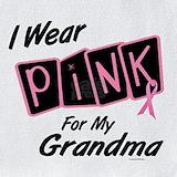 I wear pink for my grandma Bib