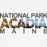 Acadia national park Sweatshirts & Hoodies