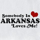 Arkansas Bib