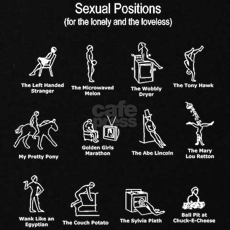 Sexual Positions Women's Plus Size V-Neck Dark T-Shirt | CafePress.com