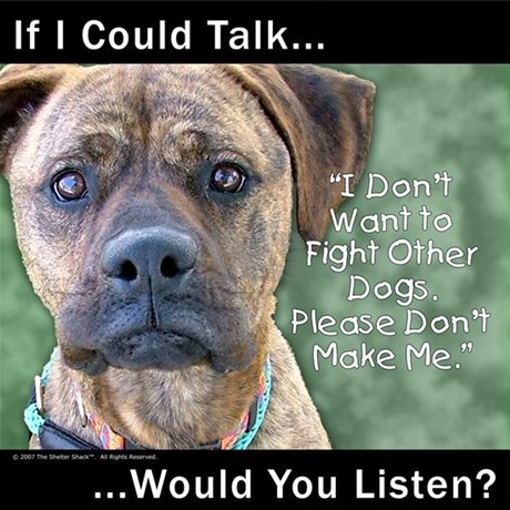 """stop dog fights """"man's best friend"""" may fight to the death in dogfights, often with tens of thousands of dollars at stake dogfighters sometimes kill the losing dogs, and even."""