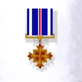Distinguished flying cross Polos