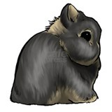 Show rabbit Aprons