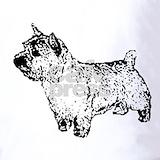 Norwich terrier Polos