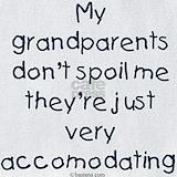 Family grandparent Bib