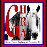 Gypsy horse T-shirts