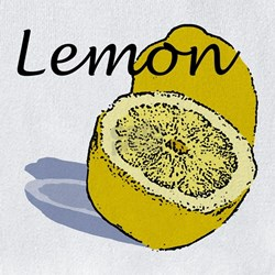 lemon bib height=250&width=250&padToSquare=true