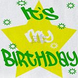 Adult humor birthday Bib