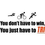 Triathlon Wall Decals