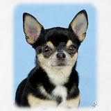 Chihuahua Aprons