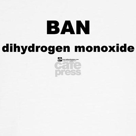 Should Dihydrogen Monoxide be banned? Essay Sample