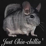 Chinchilla T-shirts