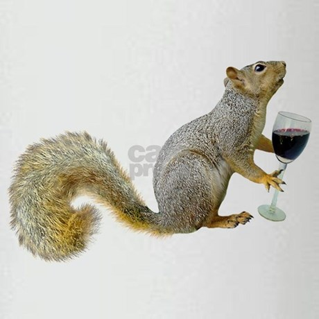 Squirrels with glasses - photo#26