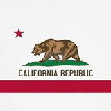 California state flag Underwear & Panties