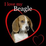 Beagle Pajamas & Loungewear