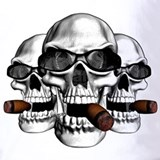 Cigar Polos