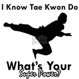 Tae kwon do Wall Decals